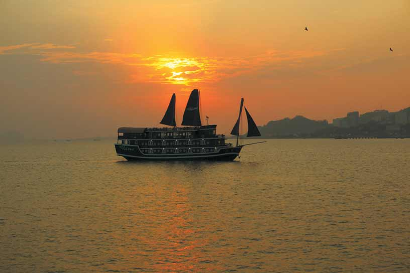 Paloma Cruise Itinerary 3 Days