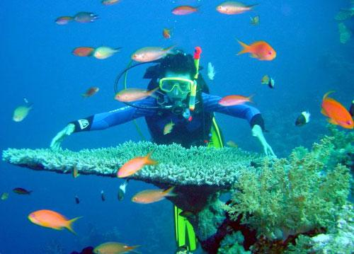 Discovery Con Dao Island 4 Days
