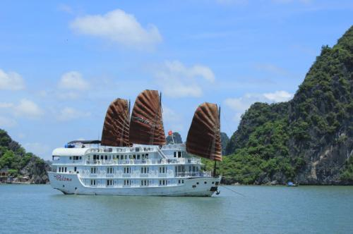 http://vietpowertravel.com/data/tour/Cruises in Halong Bay Tours: Pelican Luxury Cruise 3 Days