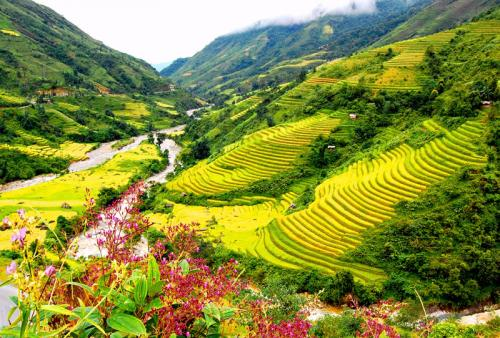 http://vietpowertravel.com/data/tour/Vietnam Classic Tour: Highlight Northern Vietnam 8 days 7 nights