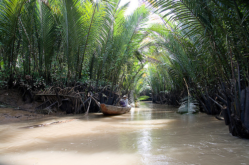Tours in Mekong Delta