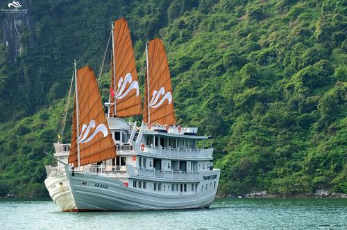 https://vietpowertravel.com/data/tour/Cruises in Halong Bay: Paradise Luxury Cruise 3 Days