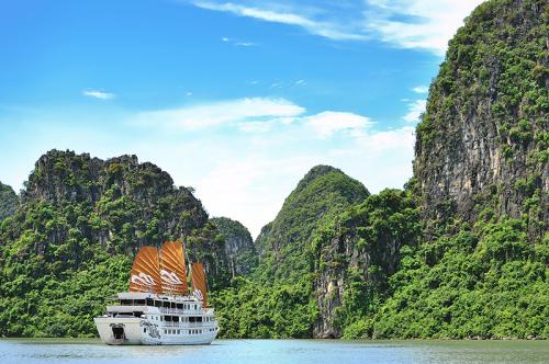 https://vietpowertravel.com/data/tour/Cruises in Halong Bay: Paradise Peak Cruise 2 Days